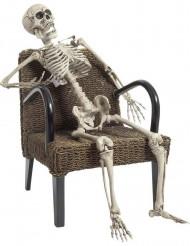Esqueleto articulado 160 cm Halloween