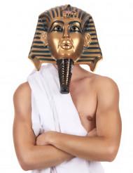 Máscara egipcia adulto