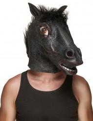Máscara cabeza caballo negro látex adulto