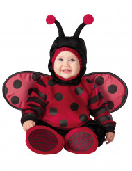Disfraz mariquita para bebé-Premium