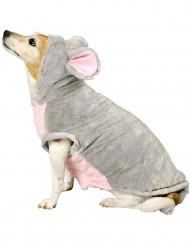 Disfraz ratón perro