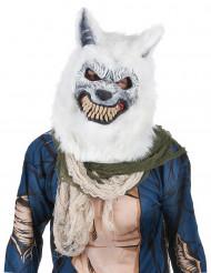 Máscara lobo blanco