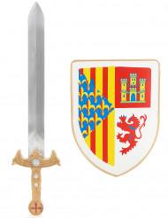 Kit escudo y espada caballero niño