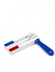 Carraca tricolor Francia