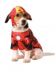 Disfraz perro Iron man™