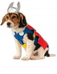 Disfraz perro Thor™