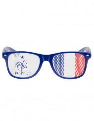 Gafas azules Francia FFF™