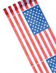 Camino de mesa USA