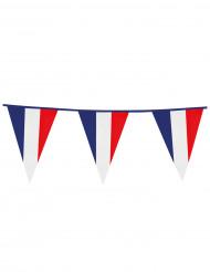 Guirnalda banderines tricolores Francia 10 m