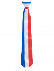 Corbata tricolor Francia