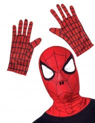 Kit accesorios Spiderman™ niño