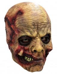 Máscara cabeza descomposición adulto - Halloween