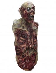 Máscara integral y busto zombie adulto