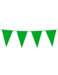Guirnalda banderines verdes 10 m