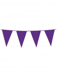 Guirnalda banderines violetas 10 m
