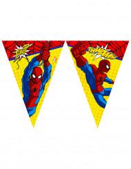 Guirnalda banderines Ultimate Spiderman Power™