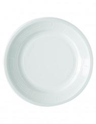 50 Platos blancos 22 cm
