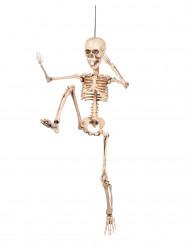 Decoración articulada esqueleto 50 cm Halloween