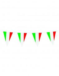 Guirnalda bandera italiana 10 m