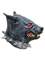 Máscara de perro rabioso lástex adulto