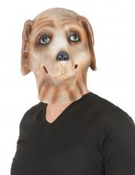 Máscara perro látex adulto