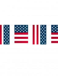 Guirnalda banderines USA 10 metros