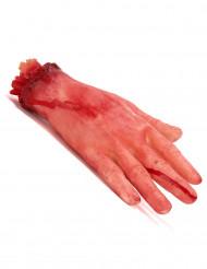 Mano cortada ensangrentada