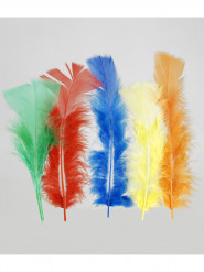 100 Plumas multicolores