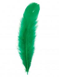 100 plumas verdes