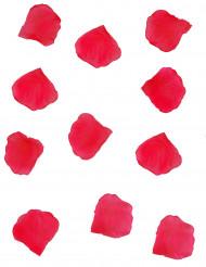 150 Pétalos de flor roja