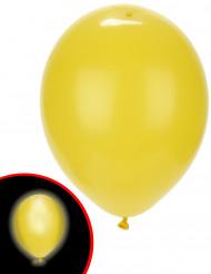 5 Globos LED amarillos Illoms ®