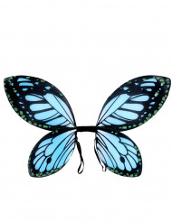 Alas de mariposa negras y azul niña