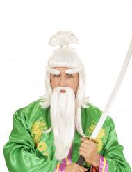 Peluca y barba maestro artes marciales adulto