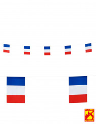 Guinalda banderines franceses 15x20