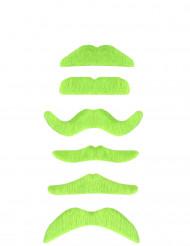 Bigote verde fluorescente adulto