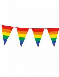 Guirnalda banderines Arcoíris 8 m