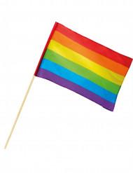 Bandera arcoíris 30x45cm