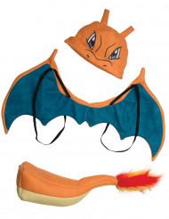 Accesorios Charizard Pokemon™