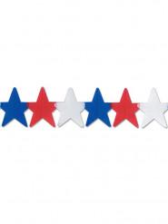 Guirnalda estrellas USA