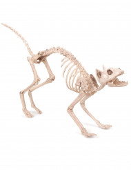 Decoración para colgar gato 60 cm Halloween