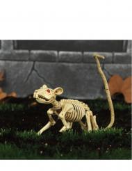Decoración rata esqueleto Halloween