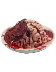 Plato de cerebro descompuesto Halloween