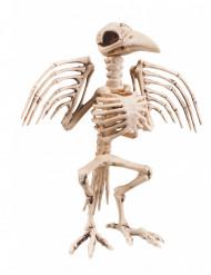 Decoración esqueleto cuervo 32 cm Halloween