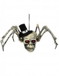 Decoración esqueleto araña Halloween 23 x 30 cm