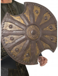 Escudo bronce 50 cm