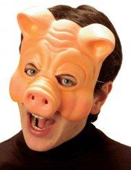 Careta cerdo adulto