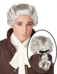 Peluca gris noble barroca hombre