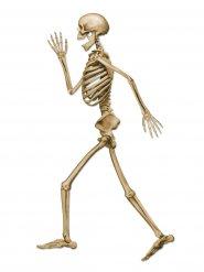 Decoración esqueleto andante Halloween beis 94 cm