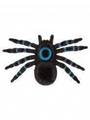 Decoración araña 16 x 10 x 2 cm
