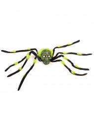 Araña gigante con calavera negra y verde 70 cm